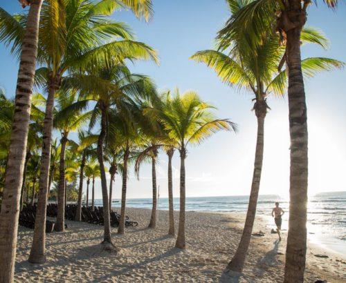 Мексиканські пляжі та Карибське море!!!