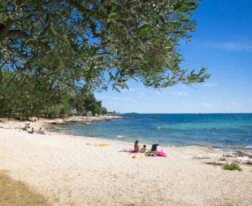 Відпочинок в Хорватії для великої сім'ї: 2 дор.+3 дітей