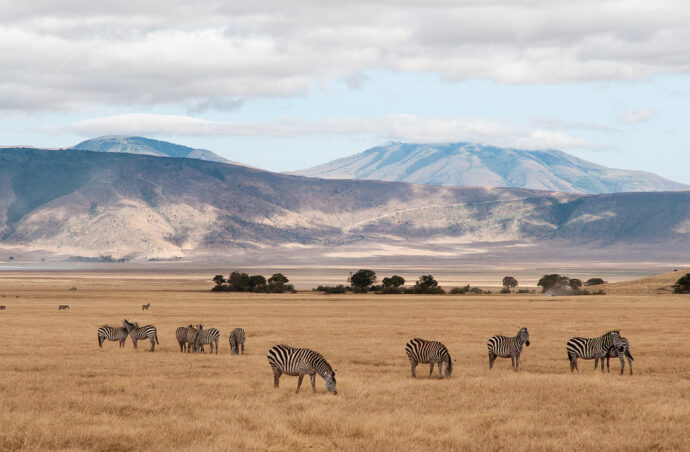 Справжняекзотика… Танзанія.
