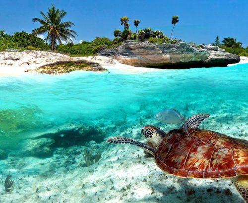Відкрий для себе всі загадки Мексики! Bluebay Grand Esmeralda 5*